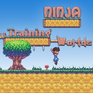 Image Ninja Training Worlds